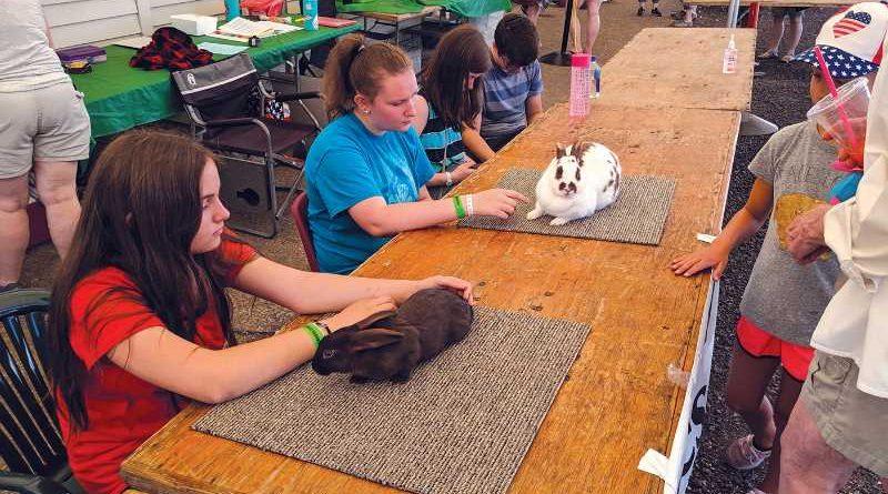 FILE PHOTO - The Clackamas County Fair had plenty of 4-H activity this year.
